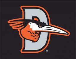 delmarva-shorebirds