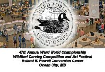 2017-wardwaterfowlcarvingcompetition