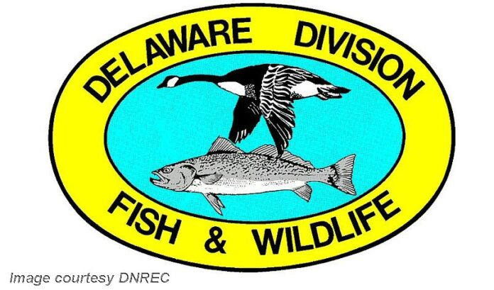 dnred-fish-wildlife