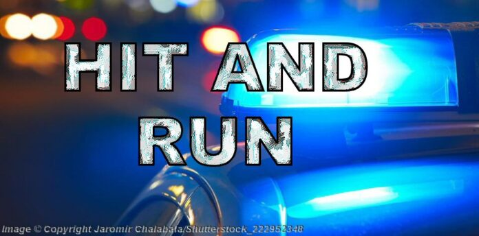 01-Hit-Run-Blue-Police-Car-Night-shutterstock_222952348.jpg