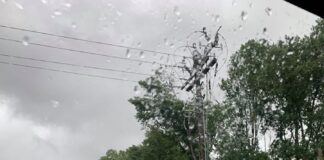 Photo courtesy of Delaware Electric Cooperative