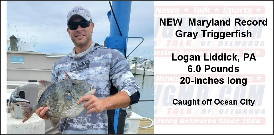 New MD State Gray Triggerfish Record – Caught Off Ocean City